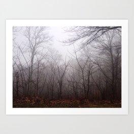 Great Smokey Mountains 4 Art Print