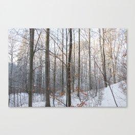 Walking time Canvas Print