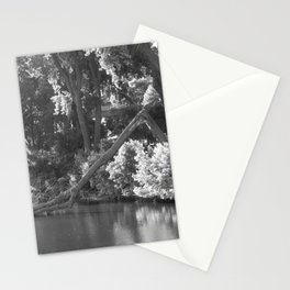 Mississippi River in Minneapolis Stationery Cards