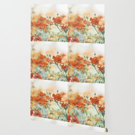 Orange Rose Flower Photography, Red Orange Roses, Burnt Orange Flowers Wallpaper