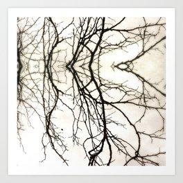 Branches #45 Art Print