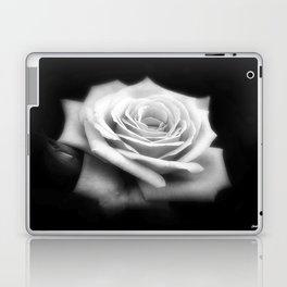 Pink Roses in Anzures 4 Dark Laptop & iPad Skin