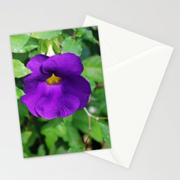 King's Mantle Stationery Cards