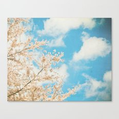 Cotton Candy Pink Canvas Print