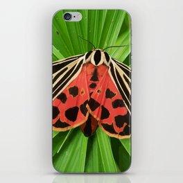 Scarlet Winged Lichen Moth Animal Print iPhone Skin