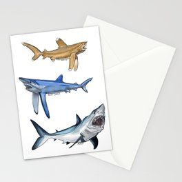 Mako Blue White Tip Sharks Stationery Cards