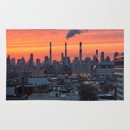 NEW YORK CITY 27 Rug