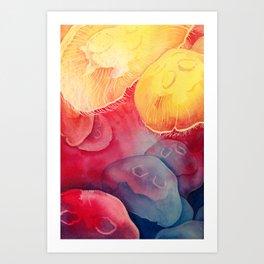Jellyfish, Moon Jellies Art Print
