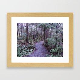 path way Framed Art Print
