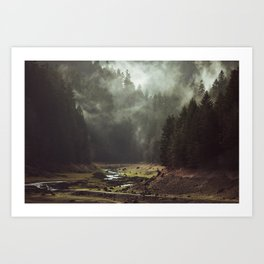 Foggy Forest Creek Art Print