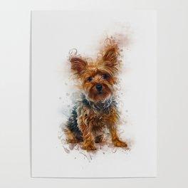 Yorkshire Terrier Art Poster