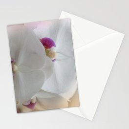the beauty of a summerday -130- Stationery Cards