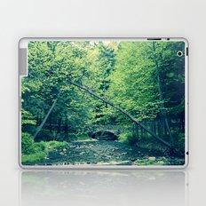 Follow Peaceful Waters Laptop & iPad Skin