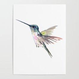 Flying Little Hummingbird Poster