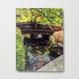 Here fishy Metal Print