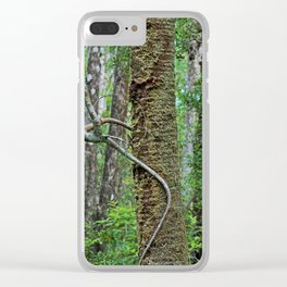 Tree Climber Clear iPhone Case