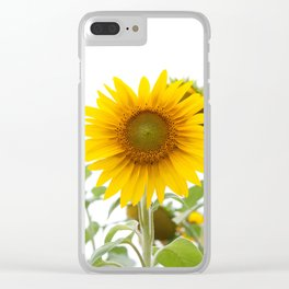 Sunflower #1 #decor #art #society6 Clear iPhone Case