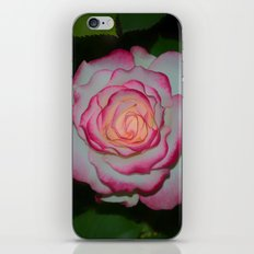 Cherry Parfait Rose iPhone Skin