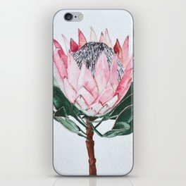 King Protea iPhone Skin