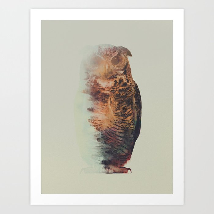 Discover the motif NORWEGIAN WOODS: THE OWL by Andreas Lie as a print at TOPPOSTER