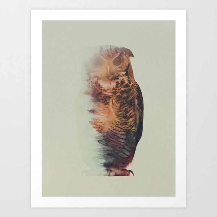 Descubre el motivo NORWEGIAN WOODS: THE OWL de Andreas Lie como póster en TOPPOSTER