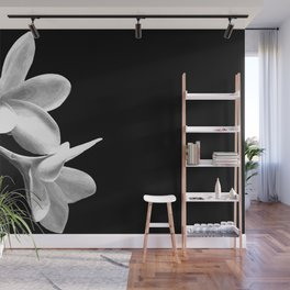 White Flowers Black Background Wall Mural