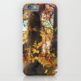Happy autumn colors iPhone Case