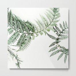 Watercolor plant Metal Print