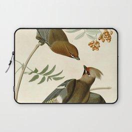 Bohemian Chatterer (Bombycilla garrulus) Laptop Sleeve
