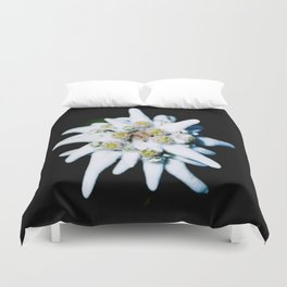 Single isolated Edelweiss flower bloom Duvet Cover