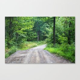 The Path That Leads Home Canvas Print