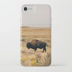 Bison Bull on Antelope Island Slim Case iPhone 7