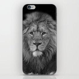 Asiatic Lion iPhone Skin
