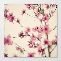 sakura Canvas Prints featuring Sakura by Laura Ruth