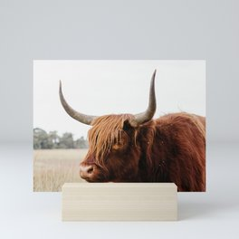 Scottish Highlander cow in national park | Cattle in Nature | Veluwe park, the Netherlands | Travel photography Mini Art Print