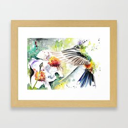 Hummingbird 3 Framed Art Print
