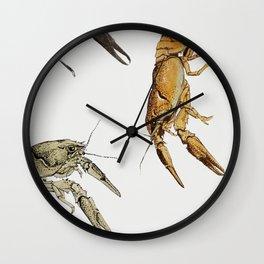 Sketches of crayfish by Julie de Graag Wall Clock