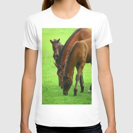 Horse Family with a Young Foal in Spring T-shirt