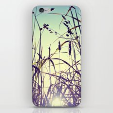 The most important thing in life aren't things iPhone & iPod Skin
