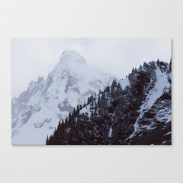 The tippy-top Canvas Print