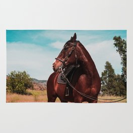 Blaze the horse color Rug