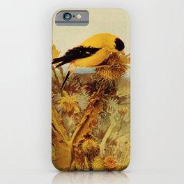 Neltje Blanchan - Bird Neighbours (1903) - Goldfinch iPhone Case