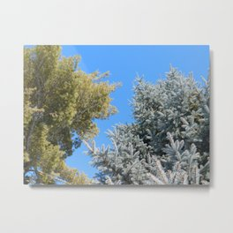 Winter Tree No.12 Metal Print