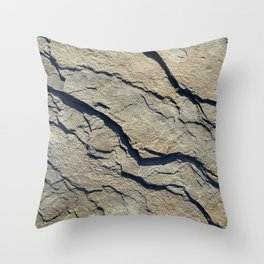 Stoneness of Stone Throw Pillow