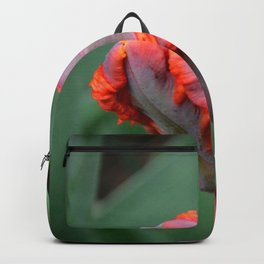 Parrot Tulip by Teresa Thompson Backpack