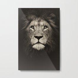 Mr. Lion King Metal Print