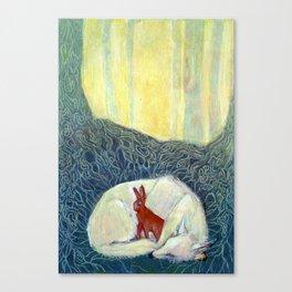 Insomniatic Hare Canvas Print