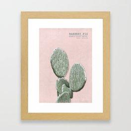 Barbery Fig - botanical print Framed Art Print
