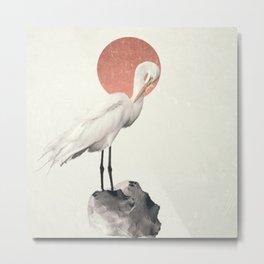 White Wings Metal Print