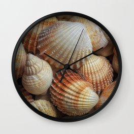 A collection of sea shells Wall Clock